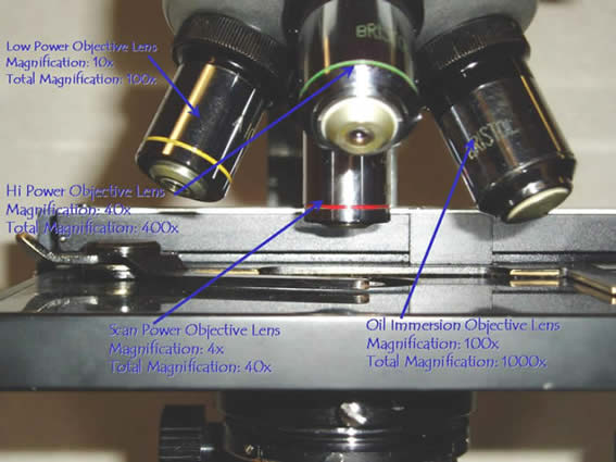 Microscope- Objectives